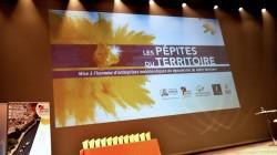 pepites16-10-2018_001